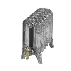 Piccadilly Cast Iron Radiator - 460mm High - Polished Finish